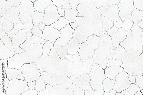 Canvas Print Stone crackle effect paper background. Gray monochrome texture.