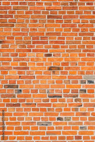 Fototapeta premium Ściana z czerwonej cegły