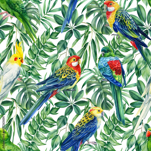 Carta da parati Wild tropical birds parrots and palms