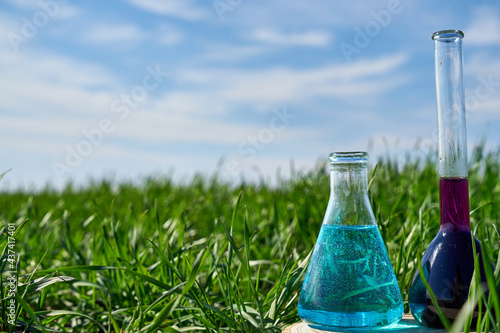 Carta da parati Image of a glass flask with a chemical solution on the background of young shoots of wheat