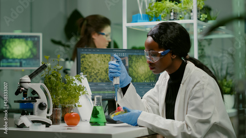 Fotografiet Biologist scientist african woman researcher taking genetic solution from test tube with micropipette putting in petri dish analyzing gmo of sapling working in biological laboratory