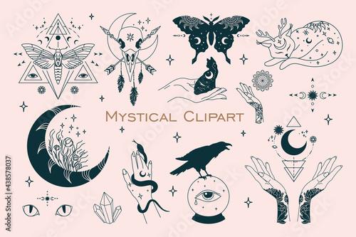 Fotografía Mystical celestial bundle