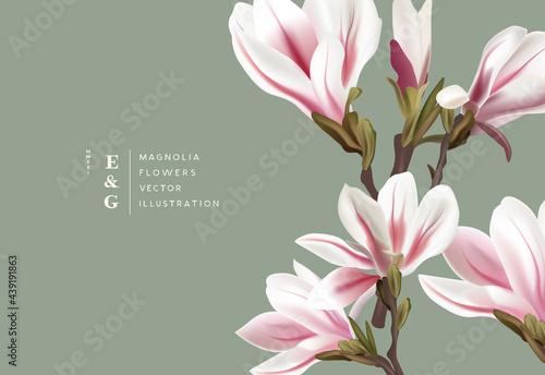 Fototapeta Natural magnolia realistic flowers contemporary event layout designs