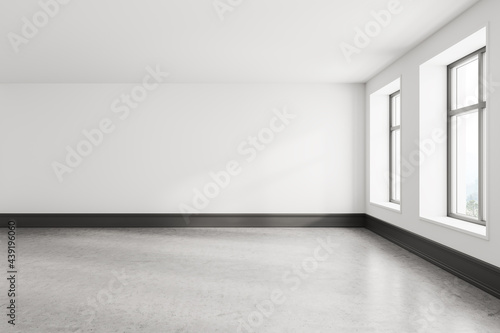 Canvas Print Empty white room interior with gray floor and two windows
