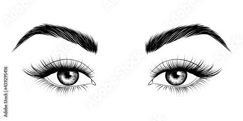 Slika na platnu Eyes with eyebrows and long eyelashes