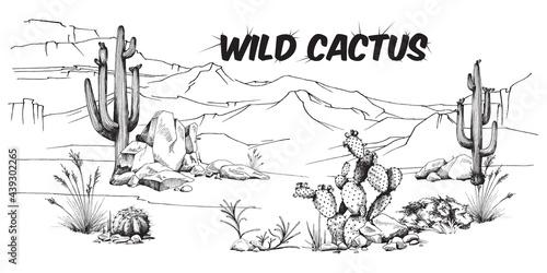 Obraz na płótnie Landscape wild desert with cactus, stones and mountains a vector illustration