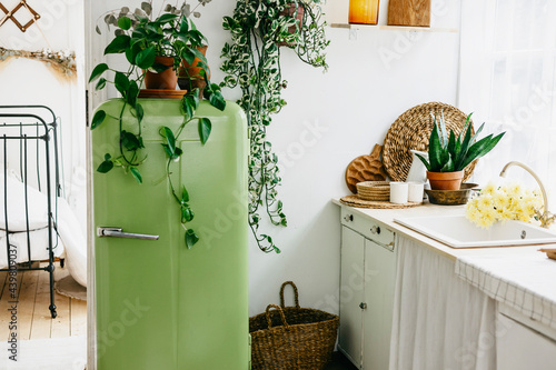 retro design kitchen with white sink and green refrigerator in a wooden rustic h Fototapet