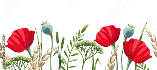 Vector horizontal seamless border with red poppy flowers and wild grasses on a white background.
