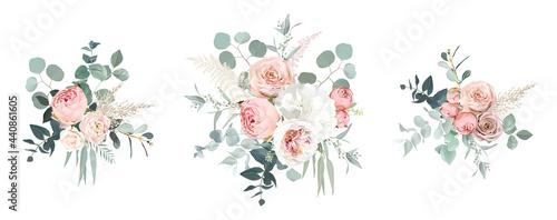 Fotografia Blush pink garden roses, ranunculus, hydrangea flowers vector design bouquets