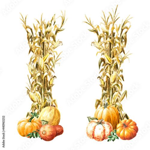Slika na platnu Autumn decoration made of dried corn stalks and ripe pumpkins set,  Hand drawn w