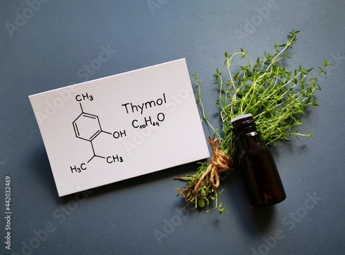 Obraz na plátně Thyme essential oil in a glass bottle with fresh green thyme twigs and structural chemical formula of thymol