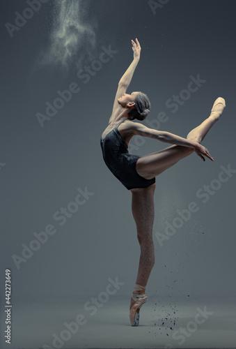 Professional ballerina dancing in studio against gray background Fototapet