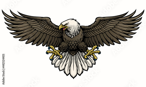 Canvas hand drawn bald eagle spreading the wings