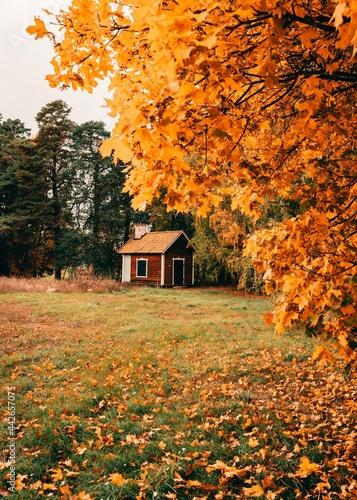 Canvastavla autumn cabin fall nature landscape vertical