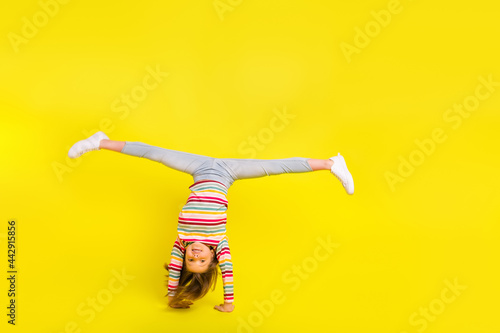 Full body photo of happy young pretty funky girl make handstand good mood isolat Fototapet