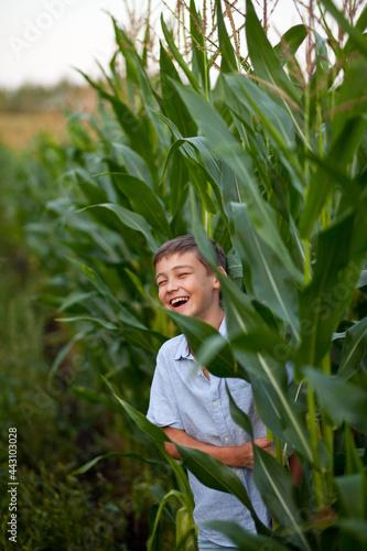 Fotografia, Obraz Teen boy kid in corn field in a summer day