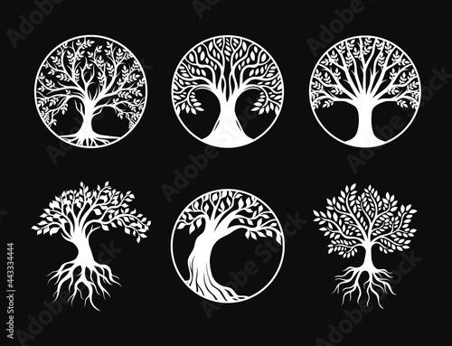 Set of tree of life decoration element
