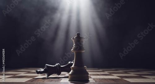 Tela White king checkmates the black king