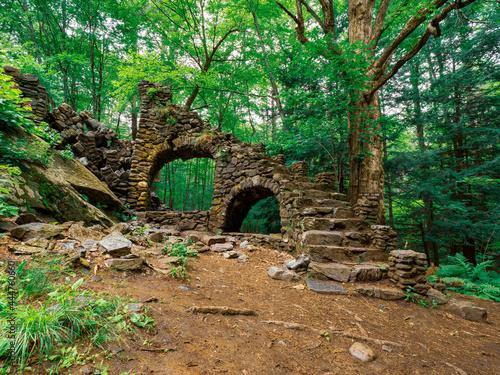 Madame Sherri Forest Castle, Archway destroyed Fototapet