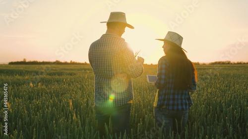 Fotografie, Obraz Farmer and businessman talking, working in wheat field, making deal, using tablet