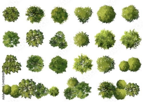 Photo vector watercolor tree top view isolated on white background  for landscape plan