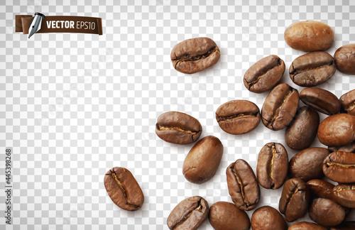 Slika na platnu Grains de café vectoriels sur fond transparent