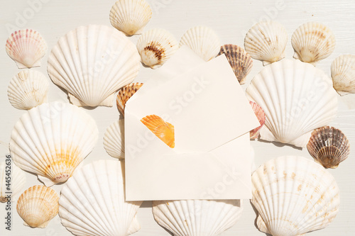 Fotografie, Obraz Sea shells styled stock scene