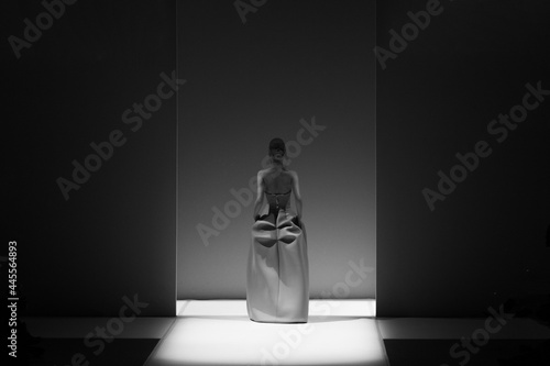 Fototapeta Fashion Show, A Catwalk Event, Runway Show, Model Walking the Catwalk