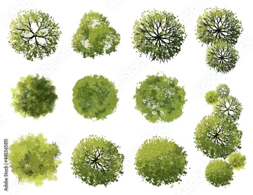 Canvas Vector tree top view isolated on white background  for landscape plan and archit