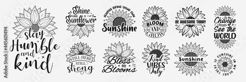 Fototapeta Set of Vector with inspirational lettering with sunflower, hand drawn sunflower