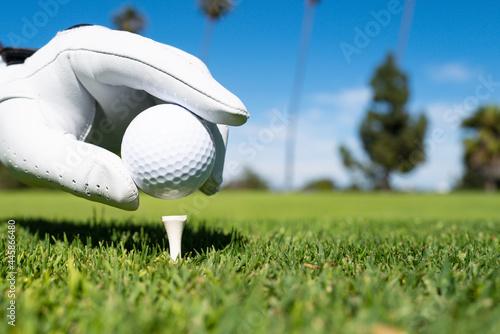 Valokuvatapetti Hand putting golf ball on tee in golf course