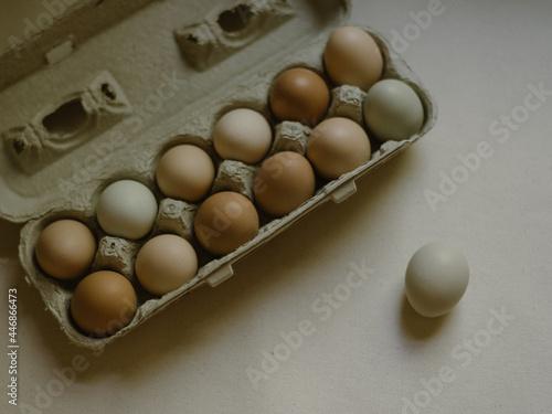 Canvastavla Pasture raised farm fresh eggs