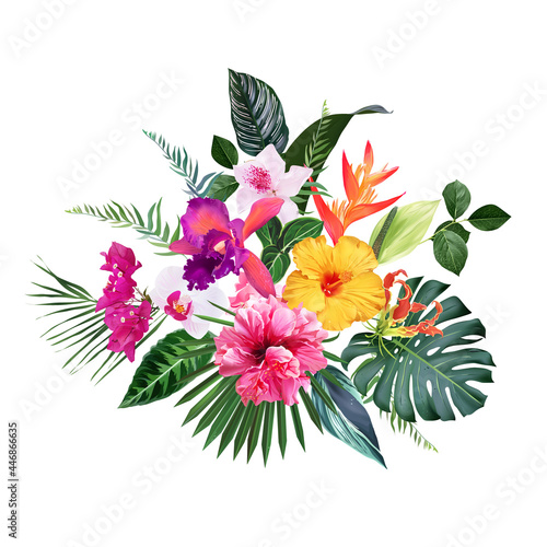 Cuadros en Lienzo Exotic tropical flowers, orchid, strelitzia, hibiscus, bougainvillea, gloriosa,