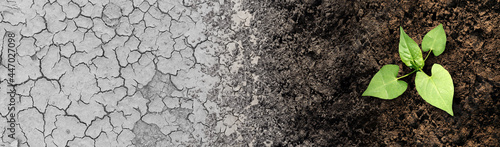 Fényképezés Climate change cycle as a dried or dry cracked land suffering from drought turning into rich moist organic earth with a growing young plant as a composite