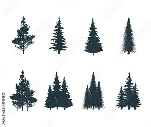 Photo Icons set of pine, fir, aspen, elm bushes