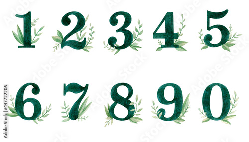 Photo Green watercolor numbers with plants