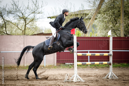 portrait of black mare horse and adult man rider jumping during equestrian showj Fototapet