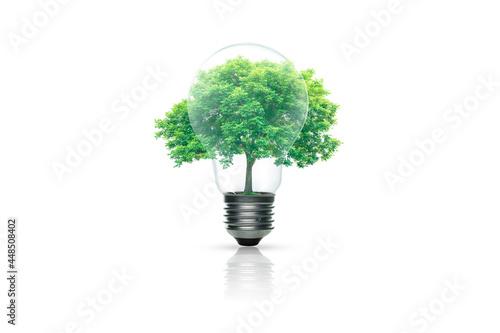 Valokuvatapetti Light bulb with green tree inside isolated on white background