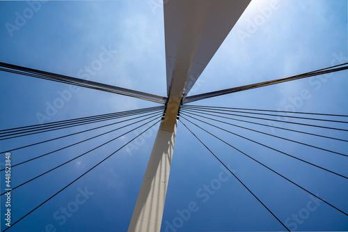 Fototapeta premium 橋! 主塔から伸びるケーブルが格好いいです