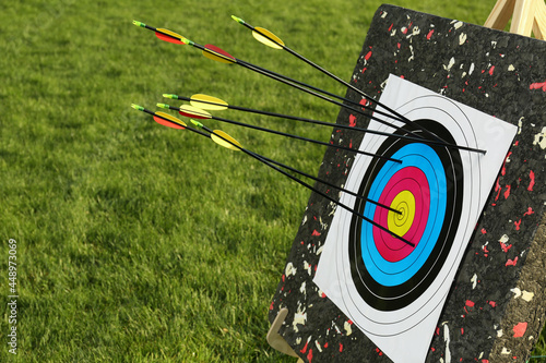 Canvastavla Arrows in archery target on green grass outdoors