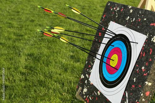 Obraz na plátně Arrows in archery target on green grass outdoors