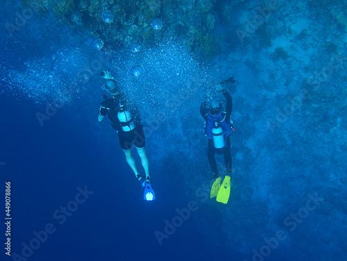 Fotografie, Obraz scuba divers in the sea