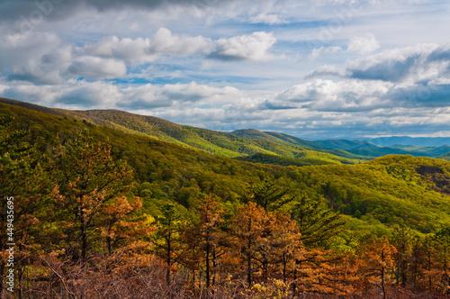 Foto Beautiful Mountain View, Shenandoah National Park, Virginia, USA