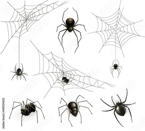 Fotografie, Tablou Spiders and spider web, vector set