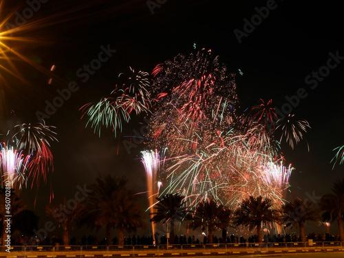 Fireworks for Qatar National Day #450702810