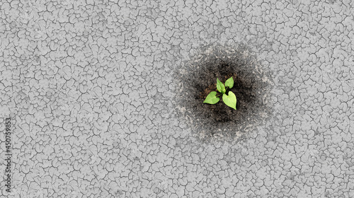 Canvas Print Climate change crisis cycle as a dried or dry cracked land suffering from drought turning into rich moist organic earth with a growing young plant as a composite