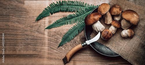 Fotografie, Obraz Fresh forest mushrooms, Boletus edulis (king bolete),  penny bun, cep, porcini a
