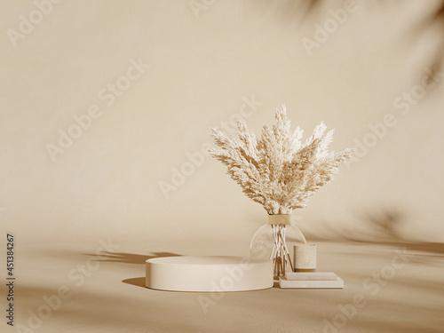 Fotografiet Premium podium on pastel background with plant branches, cactus, pebbles and natural stones