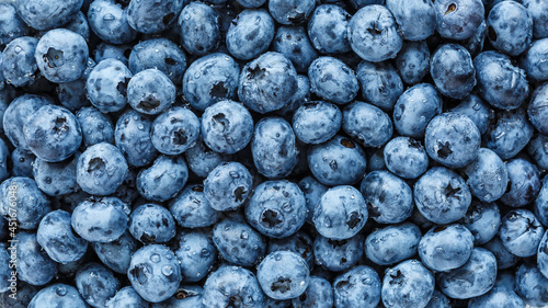 Slika na platnu Water drops on ripe sweet blueberry