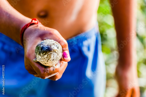 A villager boy holding a fish in hand - traditional fishing concept Fototapeta
